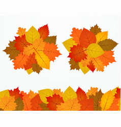 Colorful autumn foliage banners design vector