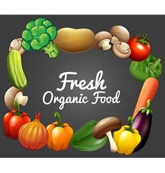 Banner design with fresh organic food vector