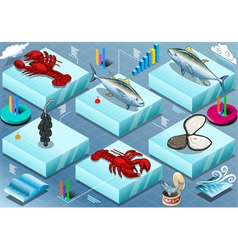 Isometric infographic of marine life vector