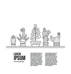 Succulents and Text vector image