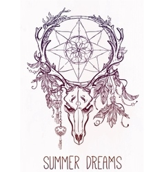 Dear skull and dreamcatcher lineart vector
