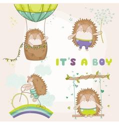 Baby Hedgehog Set - for Baby Shower vector image