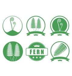 Fern vector image vector image