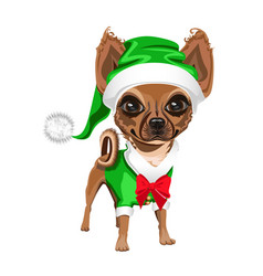 little dog in a santa claus hat vector image vector image