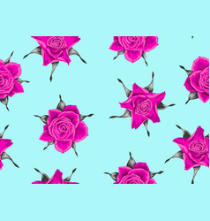 Seamless pattern with pink roses beautiful vector