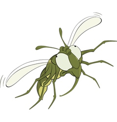 The scared green fly vector image