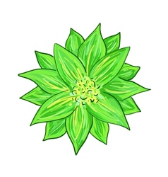 Stylized green flower vector image