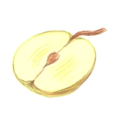 Sketch half of green apple drawn by colored vector