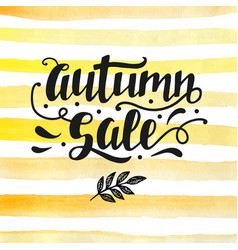autumn sale lettering modern calligraphy vector image vector image