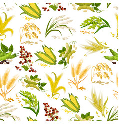 Seamless pattern of grain and cereals vector