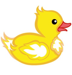 Beautiful duck vector