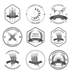 Ears of wheat and rye set labels badges vector image vector image
