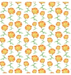 Watercolor calendula herbs seamless pattern vector