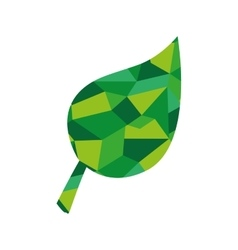 Leaf plant abstract green icon graphic vector