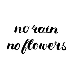 No rain no flowers brush lettering vector