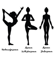 Women silhouette Lord of the dance yoga pose vector image vector image