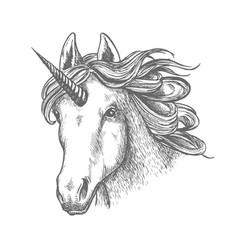 unicorn or fairy tale animal head with horn vector image