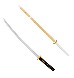 Katana and kendo sword vector