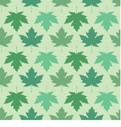 seamless wallpaper Maple leaves vector image