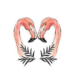 Pink flamingo isolated on vector