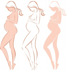 pregnant female silhouette vector image vector image