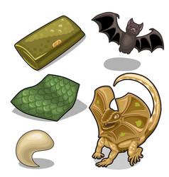 Figure of frill-neck lizard theme and bat vector