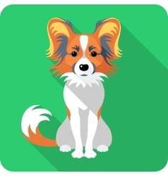 Dog chinese crested icon flat design vector