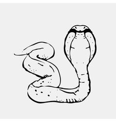 Hand-drawn pencil graphics snake cobra Engraving vector image