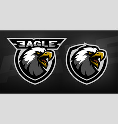 Head of the eagle sport logo vector