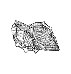 Shell black outline on a white background vector