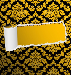 damask seamless background with hole vector image vector image