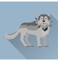 Grey wolf in the collar vector