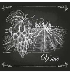 Hand drawn chalk drawing wine background vector