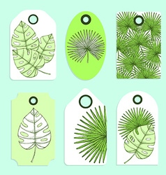 Engraved palm leaves set of tags vector