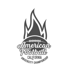 american football badges logo and labels vector image