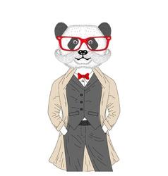 Brutal panda in elegant classic suit with coat vector