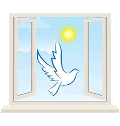 Dove bird pigeon fly in open window vector