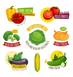 Fresh healthy vegetables labels set cartoon vector
