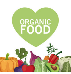 Organic food healthy vegetable vector