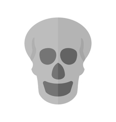 Skull X-ray vector image vector image