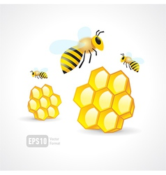 Honey mead bee honeycomb element vector