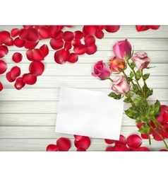 Beautiful roses with gift card eps 10 vector