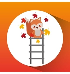 animals fall design vector image