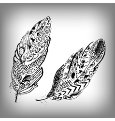 Hand drawn stylized feathers collection vector