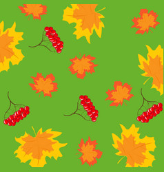 Pattern from berry and foliages vector
