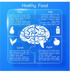 Useful food infographics vector