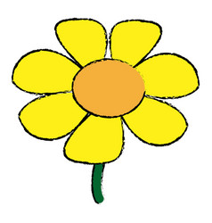 Daisy flower beauty nature decoration vector