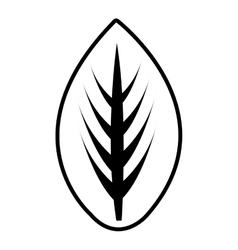 flat tree leaves graphic vector image