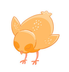 Little cartoon chicken pecks of grain vector