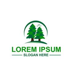 Pine trees logo vector